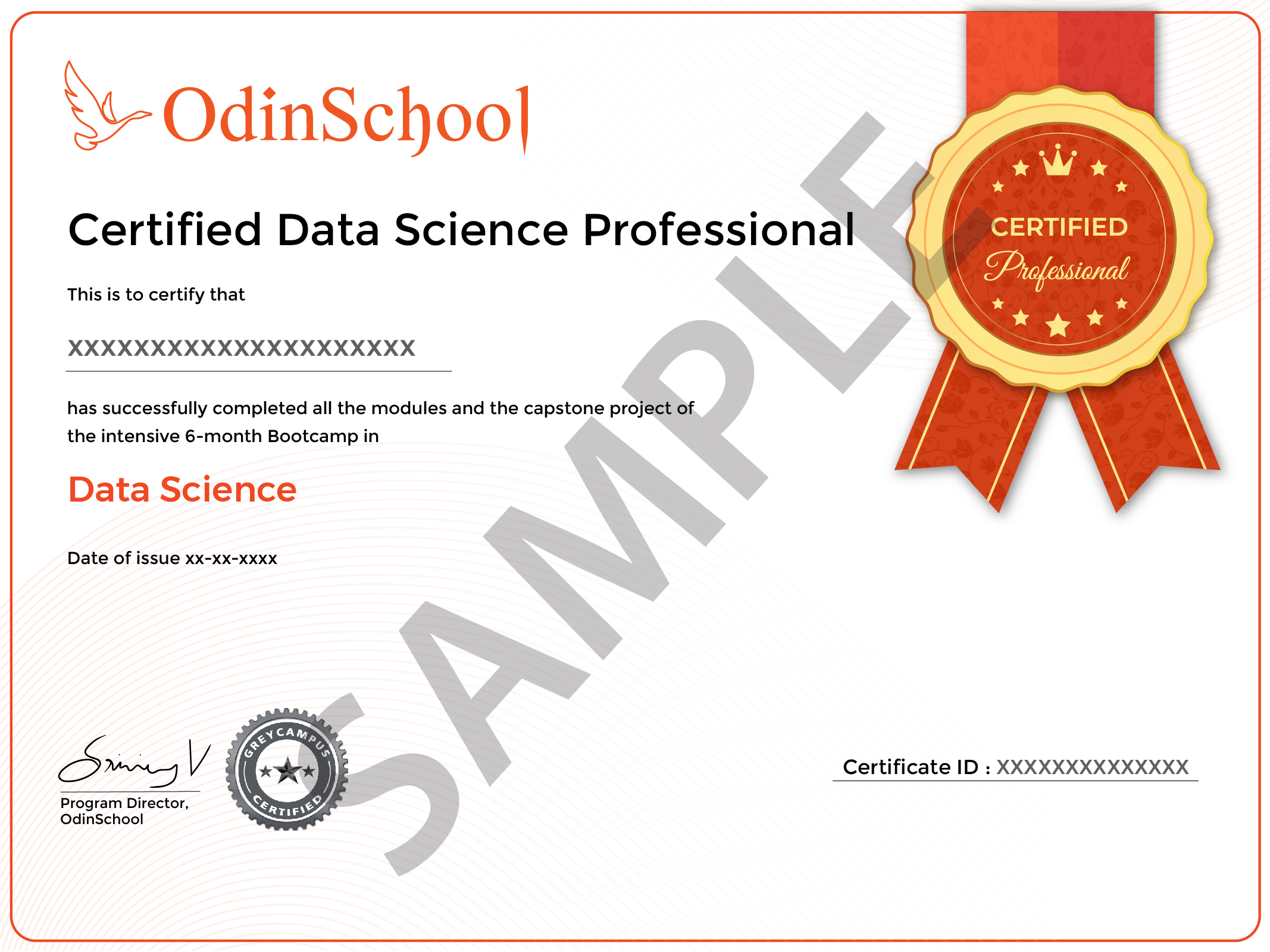 Certified Professional-01-01-01